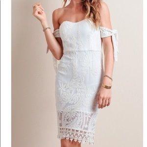 NWT Line & Dot Lace Dress